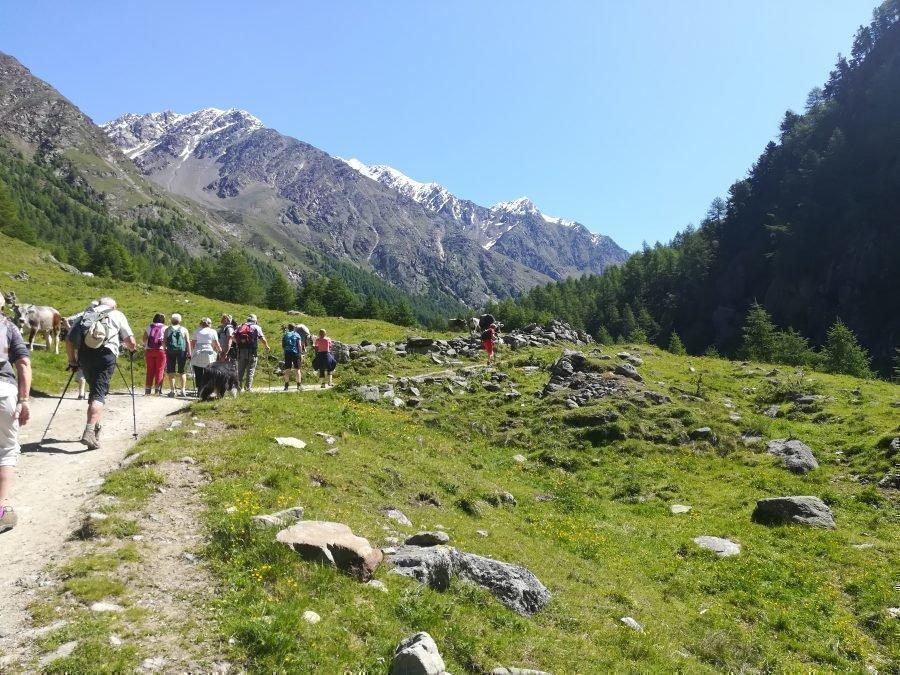 Wanderung Pfossental Juni 2020
