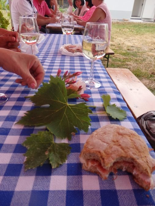 Kaltern mit Besuch beim Weinbauern Juni 2021