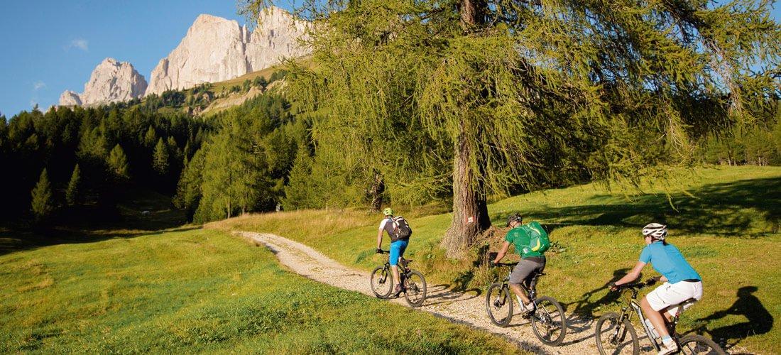 Fietsvakantie in Vinschgau - Eerste klasse bike-regio